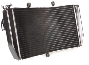 Radiators at Wemoto